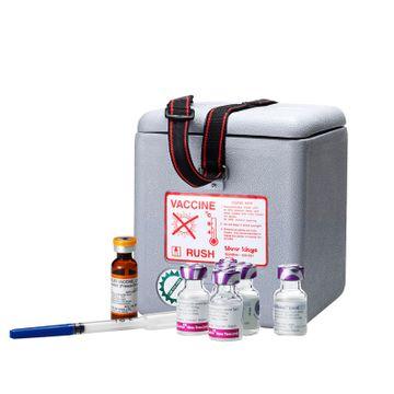 Kombinované očkování proti tetanu, záškrtu a černému kašli